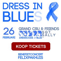 Dress in Blue(s) - benefietconcert