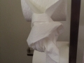 -luccolemont-we-knopen-het-in-onze-oren-n-in-ons-toiletpapier-stopdarmkanker